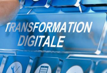 Conseil et solutions numériques